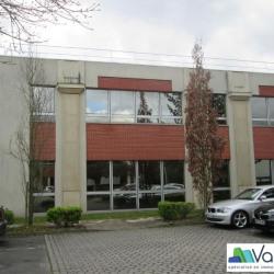 Vente Bureau Émerainville (77184)