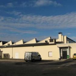 Location Local d'activités Lisses 3200 m²