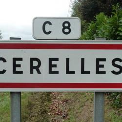 Vente Terrain Cerelles 1007 m²