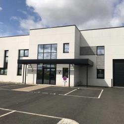 Vente Bureau Saint-Pierre-du-Perray (91280)