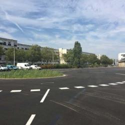 Location Local d'activités Saint-Priest 17808 m²