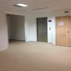 Location Bureau Lyon 6ème 862 m²