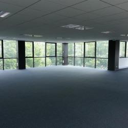 Location Bureau Chelles 719 m²