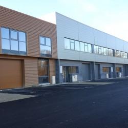 Vente Entrepôt Bussy-Saint-Martin 402 m²