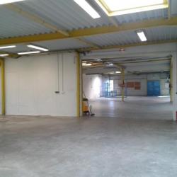 Vente Entrepôt Moult 864 m²