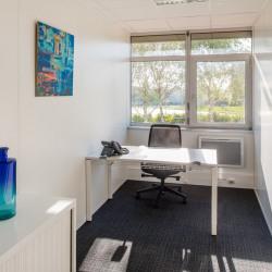 Location Bureau Paray-Vieille-Poste 10 m²