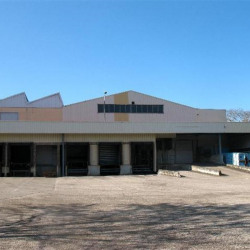 Location Local d'activités Chessy 8800 m²