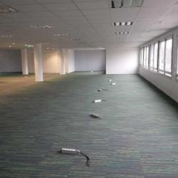 Location Bureau Maisons-Alfort 434,25 m²