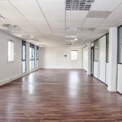 Location Bureau Lyon 7ème 1070 m²