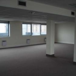 Location Bureau Noisy-le-Grand 305 m²