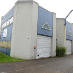 Location Local d'activités Saint-Martin-d'Hères 150 m²