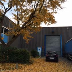 Vente Entrepôt Torcy 436 m²