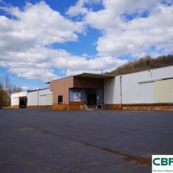 Location Entrepôt Condat-sur-Vézère 1100 m²