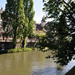 Vente Local commercial Strasbourg 60 m²
