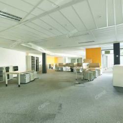 Location Bureau La Plaine Saint Denis 1052 m²