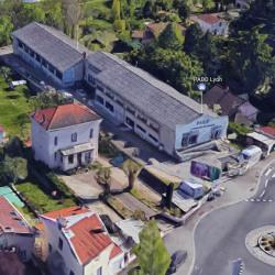 Location Local d'activités Rillieux-la-Pape 500 m²