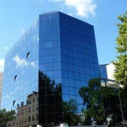 Location Bureau Lyon 3ème 260 m²