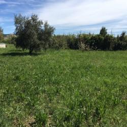 Terrain  de 650 m²  Eyragues  (13630)