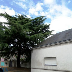 Vente Local commercial Saint-Pierre-des-Corps 340 m²
