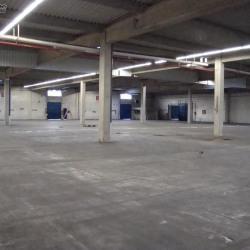 Location Entrepôt Meaux 11999 m²