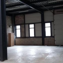 Location Local d'activités Montévrain 337 m²