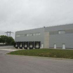 Location Bureau Castelnau-le-Lez 440 m²