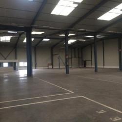 Location Local d'activités Saint-Quentin-Fallavier 2280 m²