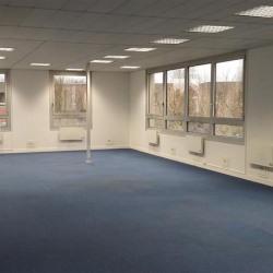 Vente Bureau Émerainville 908 m²