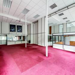 Location Bureau Paris 19ème 165 m²