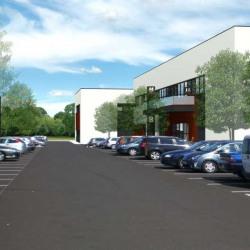 Location Local d'activités Dardilly 22182 m²