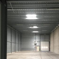 Location Local d'activités Lisses 712 m²