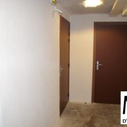Location Bureau Lyon 7ème 36 m²