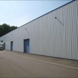 Location Local d'activités Templeuve 1200 m²