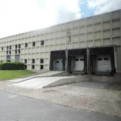 Vente Local d'activités Croissy-Beaubourg 5054 m²