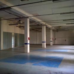 Location Local d'activités Nanterre 2754 m²
