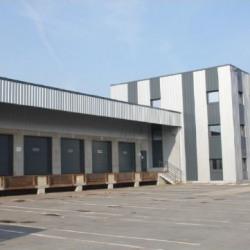 Location Entrepôt Roncq 2000 m²