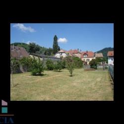 Vente Terrain Thann 0 m²