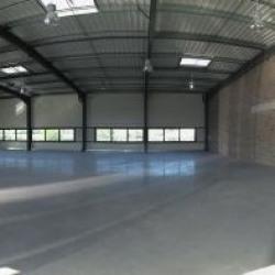 Location Local d'activités Escalquens 2043 m²