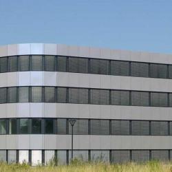 Location Local d'activités Mundolsheim 273 m²