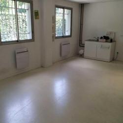 Vente Local d'activités Villeurbanne 424 m²