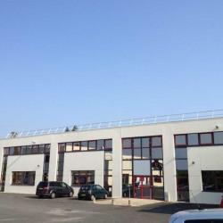 Location Bureau Carquefou 1284,95 m²