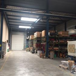 Vente Local d'activités Lognes 1762 m²