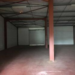 Location Entrepôt Ayguemorte-les-Graves 250 m²