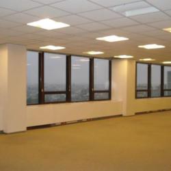 Location Bureau Paris 15ème 9385 m²