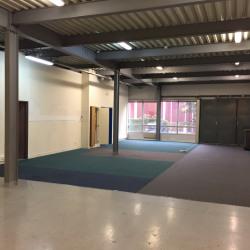 Location Entrepôt Sartrouville 1366 m²