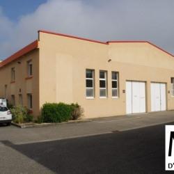 Location Local d'activités Toussieu 206 m²