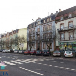 Location Local commercial Sarrebourg 81,31 m²