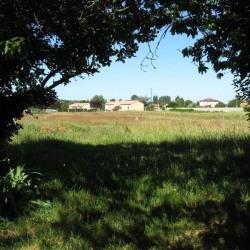 Vente Terrain Chenaud 2000 m²
