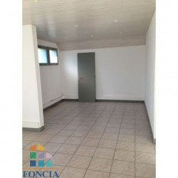 Location Local commercial Ferney-Voltaire 50,4 m²