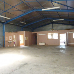 Location Local d'activités Beauzelle 415 m²